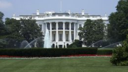 The View From the Whitehouse