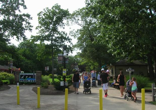 Cape May County Zoo Named Among the Top Zoos in the World