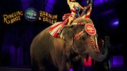 'The Greatest Show on Earth' to End After 146 Years